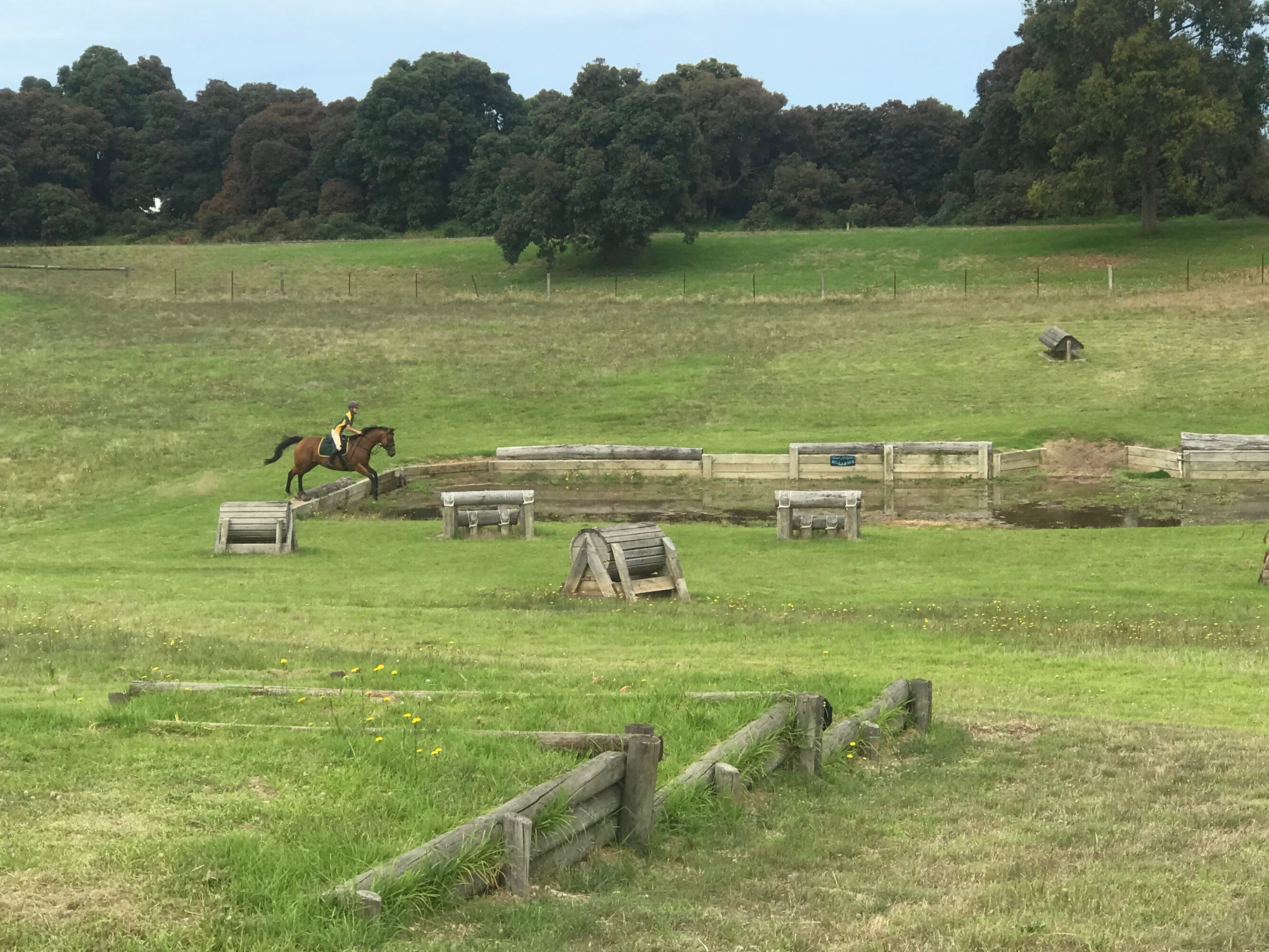 Mount Gambier and District Pony Club Horse Trials 2020 - Carnarvon Accommodation