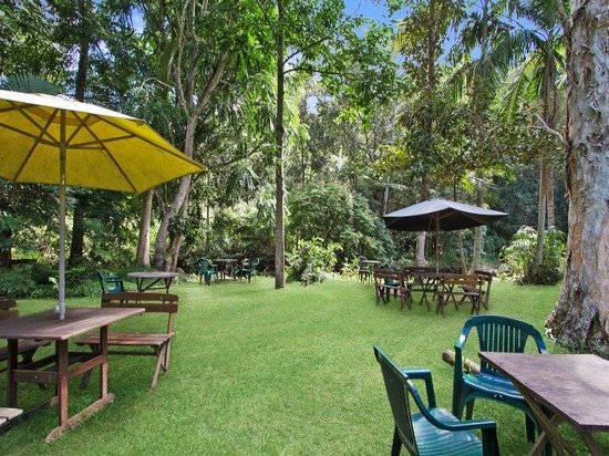 Rainforest - Carnarvon Accommodation